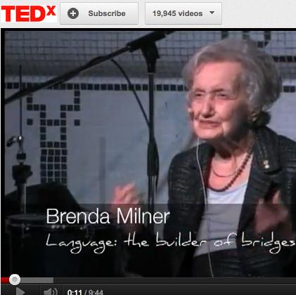 Brenda Milner video 2