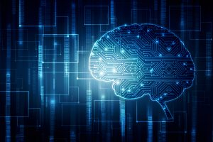 Bringing Machine Learning and Neuroscience Together