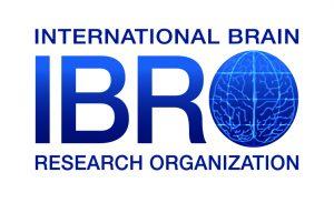 IBRO logo