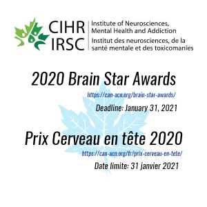 Brain Star Awards